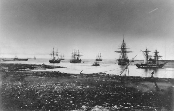 French_squadron_Crimean_war_267106